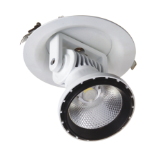 COB Spot Light 40/50W